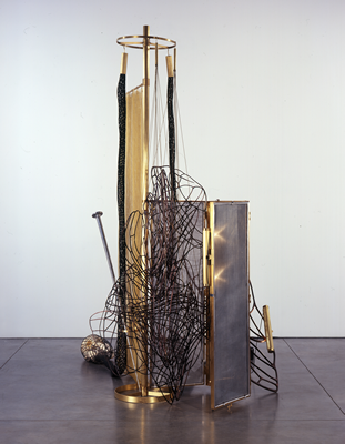MARCO TUNGA-Holy Ghost-2007 MUSEUM