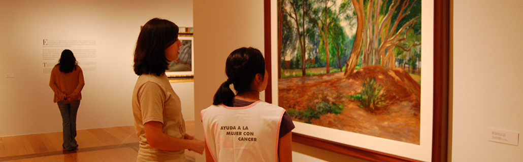 museum-framework-communities-art-therapy-other