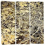 museo-marco-Jan Hendrix-G