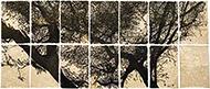marco-museum-Jan Hendrix-Samburoll