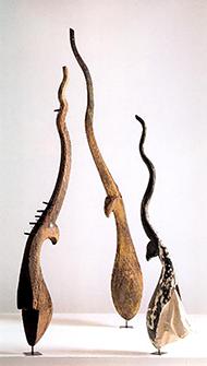museum-frame-Laura Anderson Barbata-Espiritus Selva