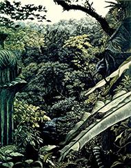 museum-marco-maria sada-vista edward james