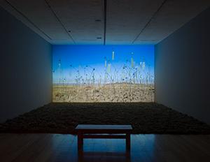 museo-marco-galeria-exposicion-Boltanski-5